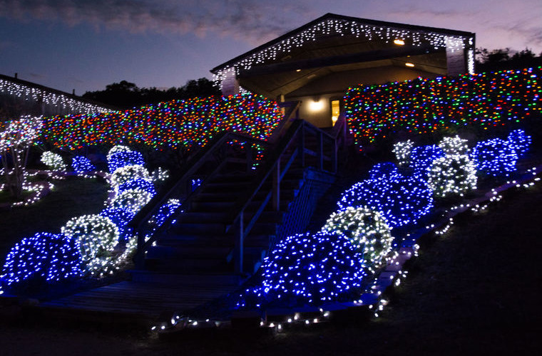 Check Out Nature in Lights in Killeen, TX ~ Visit Killeen
